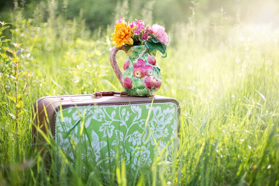 summer-still-life-suitcase-in-field-grass-summer-large